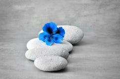Concept de station thermale avec des pierres de fleur et de zen Photographie stock