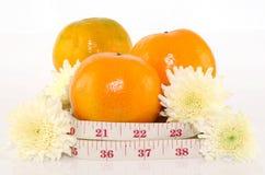 Concept de surveillance du poids par le contrôle de régime Photographie stock