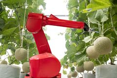 Concept de technologie d'Agritech, photo stock