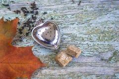 Concept de thé d'automne Photo stock