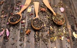 Concept de thé Différents genres de thé dans des cuillères en bois sur le weathere Images stock