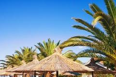 Concept de vacances d'été Parasols et feuilles des palmiers contre le ciel bleu L'espace libre pour le texte Photographie stock libre de droits