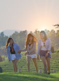 Concept de vacances, de vacances, d'amour et d'amitié - trois de sourire Image libre de droits
