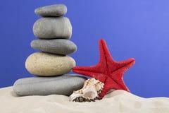 Concept de vacances Les étoiles de mer rouges, coquillage avec les pierres gentilles ont mis dessus sur le fond bleu gentil Photographie stock libre de droits