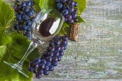 Concept de vin Image libre de droits