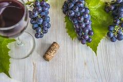 Concept de vin Images stock