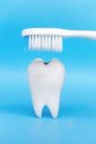 Concept dentaire d'hygiène photo libre de droits