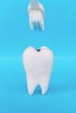 Concept dentaire d'hygiène photos libres de droits