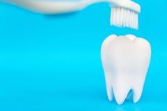 Concept dentaire d'hygiène photographie stock libre de droits