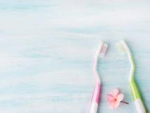 Concept dentaire d'hygiène Brosses à dents, fleurs, menthe Images stock