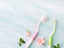 Concept dentaire d'hygiène Brosses à dents, fleurs, menthe Photo stock