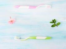 Concept dentaire d'hygiène Brosses à dents, fleurs, menthe Photographie stock libre de droits