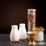 Concept des accessoires de sel et de poivre Photo stock