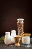 Concept des accessoires de sel et de poivre Images stock