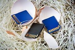 Concept des cartes de mémoire, soutenu dans le nid Images libres de droits