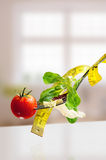 Concept diet fork with salad and metro vertical composition Stock Image