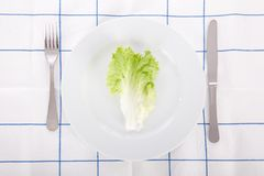 Concept for diet with a lettuce leaf Stock Photos