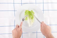Concept for diet with a lettuce leaf Royalty Free Stock Images
