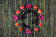 Concept with earth and colourful flowers around, planet earth on wooden background Royalty Free Stock Photography