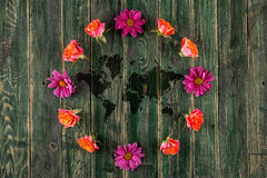 Concept with earth and colourful flowers around, planet earth on wooden background Royalty Free Stock Photos
