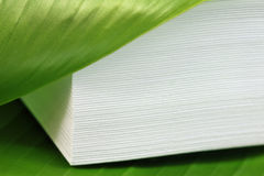 Concept of echo friendly papers. Stacked papers with green leaf Royalty Free Stock Images