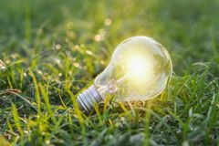 concept eco. close up lightbulb on green grass with sunset and b stock image