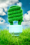Concept Eco light bulb. Eco light bulb in green grass on blue sky background Stock Images