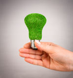 Concept Eco light bulb Royalty Free Stock Photography