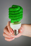 Concept Eco light bulb Stock Images