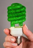 Concept Eco light bulb Royalty Free Stock Images