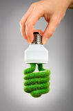 Concept Eco light bulb Royalty Free Stock Image
