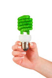 Concept Eco light bulb. Eco light bulb in hand isolated on white background Stock Photography