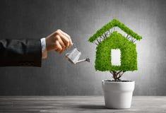 Concept ecologie recycling en ecobouw met installatie in pot Royalty-vrije Stock Afbeelding