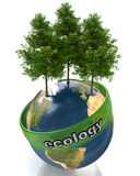 Concept of ecology Royalty Free Stock Images