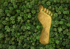 Concept of ecology. Stock Photography