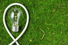 Concept ecology. Light bulb on green natural moss with copy space royalty free stock photo