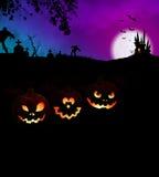 Concept effrayant heureux de partie de nuit de Halloween avec des potirons Photographie stock libre de droits