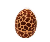 Concept - egg of giraffe. This concept - spotted egg of giraffe is symbol of very rare things Royalty Free Stock Photo