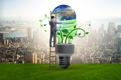 The concept of energy efficiency with lightbulb royalty free stock photo