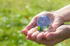 Concept for environment protection Stock Images