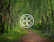 Concept environnemental d'inspiration de feuille verte de trèfle Photo stock