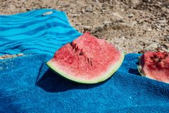 Ripe watermelon slices on the seashore royalty free stock photo