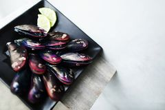 Close up black plate of red purple oyster or shellfish, fresh seafood for costumers, copy space. Concept of expensive raw red purple oyster delicatessen with Stock Photos