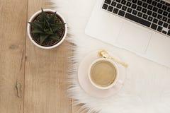 Concept féminin de lieu de travail Espace de travail indépendant avec l'ordinateur portable, succulent Fonctionnement de Blogger Photographie stock