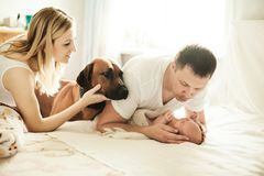 Concept of family happiness - portrait of happy parents with a d. Og and a newborn baby.the photo has a empty space for your text Royalty Free Stock Images