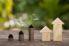 The concept of financial savings to buy a house. Money and plant, Saving money concept, concept of financial savings to buy a house,trees growing in a sequence royalty free stock images
