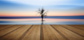 Concept fine art image of tree reflected in still waters with wo Stock Photography