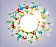 Concept floral de fond clair lumineux de ressort avec le papillon, cadre d'or rond, feuilles, marguerites Photographie stock