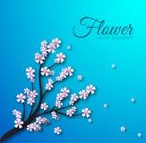Concept floral de fond de branche Vecteur Photographie stock libre de droits