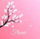 Concept floral de fond de branche Vecteur Photographie stock